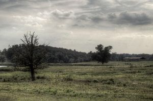 Country Dream HDR by joelht74