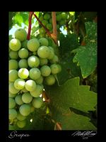 Green Grapes by DistantVisions