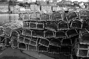 lobster nets by editwilson