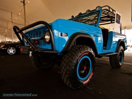 Grabber Bronco Blues by Swanee3