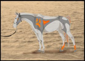 Halter- CH Tryst by Everland-Stables