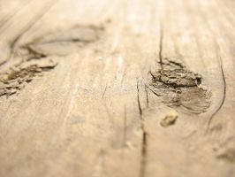 Wood. by iReap