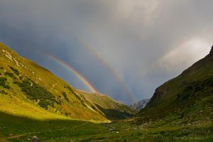 Flesspass Rainbow by Dave-Derbis