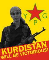 YPG Support Poster by Party9999999