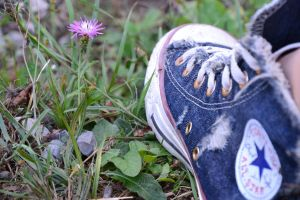 Jeans All Star 2 by Gaia96Bennoda