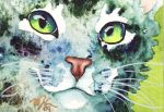 Furry Green Tabby by GeocachingOdder