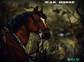 Joey the War Horse WITH AN EPIC BACKGROUND :D by SeeYaOnSondee