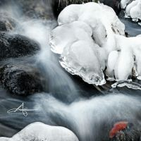 Winter Creek by Stridsberg