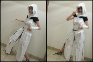 AC - Toilet Paper Altair...? by Fallen--Angel