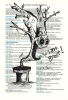Dictionary Art - Groot by Jbressi