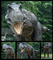 Full Size T-Rex by CB-FX