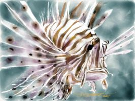 Lionfish by acostamt