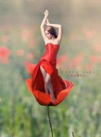 Poppy Girl by MelodyPictures