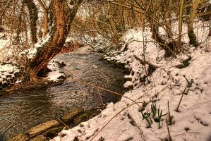 Anston Brook in the snow... by TheBaldingOne