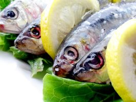 Lemon Sardines 15219015 by StockProject1