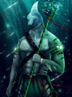 Shark protector by Dragonborn91