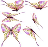 SWALLOW-TAIL-BUTTERFLY psd zip download by Rick-Lilley