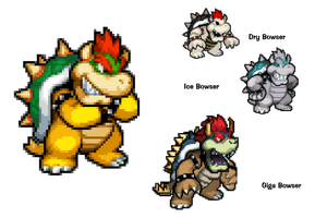 SMBHotS - Bowser's forms by KingAsylus91