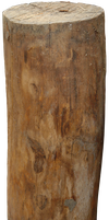 log wood png by gd08