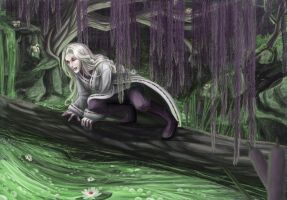 Sidae Swamp Witch by lizspit