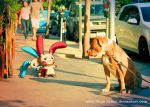 Wild Minun and Plusle on LA street by Ninja-Jamal