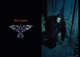 The CROW by BlackTheMoon