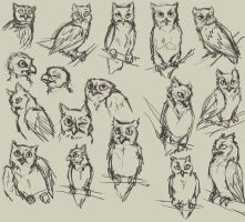 Owl practice by HereLiesDeadSquirrel