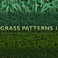 Grass Patterns 1 by AscendedArts