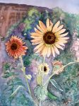 Sunflowers by cristineny
