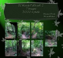DC woods path set2 by Wicasa-stock