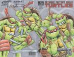 TMNT_1 sketch cover 1 by JLWarner