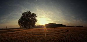Field panorama 2 by FrantisekSpurny