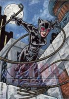 DC: Women of Legend - Catwoman AP by tonyperna