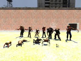 Half Life Zombies And Headcrabs by NikeMan223