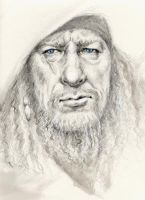 Captain 'blue eyes' Barbossa by kinkykrueger