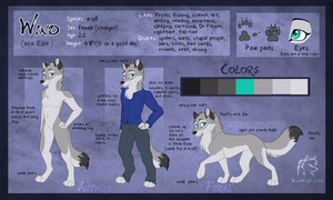 Wind (Ellie) Anthro and Feral Ref 2014 by WindWo1f