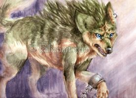 Link the Wolf by kalicothekat