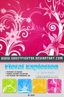 Floral explosion BRUSHES + png by Andrei-Oprinca