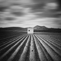 Isolated by HectorGuerra