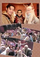 Bard, Elron, and Thranduil cosplay by seawaterwitch