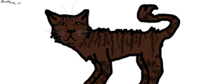 Tigerstar by brindlecatt
