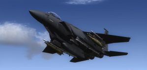 F-15E Boeing 3 by agnott