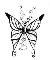 butterfly by christymay26