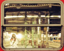 View in a train by Holunder