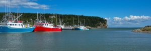 Harbour at Alma NB by Brian-B-Photography