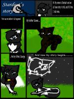 Stardust's Story p1 by FieryTiger