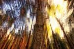 Skylight in motion by RobinHedberg