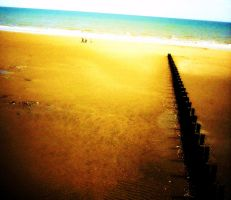Brid Beach Color by pilkingtoez