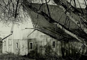 Abandoned...but for dark spirits II... by thewolfcreek