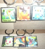 Pokemon Card Keychains by Lemguin